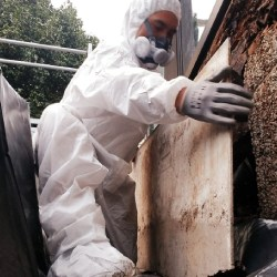 Asbestos-removal-IN-AUCKLAND